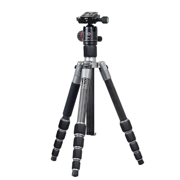 KINGJOY Kingjoy A81 Carbon Fiber Tripod with T11 Low Profile Ball Head